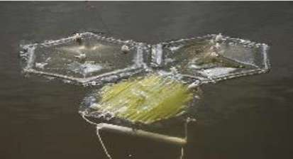 algae-harvesting