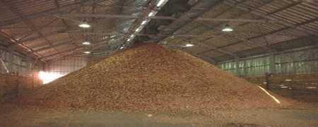 biomasa-termica